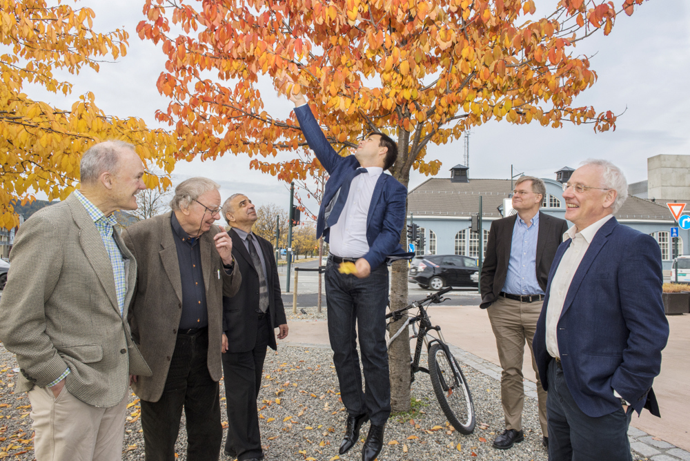 Inspired by the presentations from CASA's PhD candidates, SAB member Frank Schäfer jumps to catch autumn leaves. The rest of the board from left; John Hutchinson, David Embury, Ahmed Benallal, Jonas Faleskog and Norman Fleck. Photo: Lena Knutli.